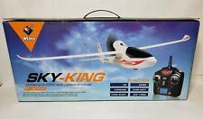 Wltoys F959 SKY-King 2.4G 3CH Radio Control RC Airplane Aircraft RTF US R6A6