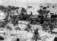WWII Photo US Marines on Peleliu Landing Beach USMC  World War 2 WW2 USMC / 1190