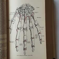 Grays Anatomy Classic Collectors 780 Medical Illustrations Color Ephemera Body