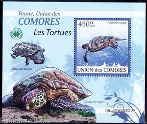 Comoros 2009 MNH Sheet, Chelonia mydas, Green sea turtle, Marine Life