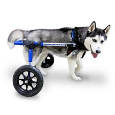 Refurbished Dog Wheelchair - For Med/Lg Dogs 50-69lbs - By Walkin' Wheels