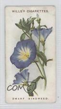 1913 Wills Old English Garden Flowers Series 2 #28 Dwarf Bindweed Card 0a1