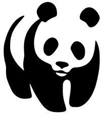 Panda Vinyl Decal, Bumper Sticker, Cute, JDM Decal for Car, Windows, Outdoor etc