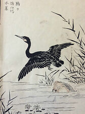 Kono Naotoyo Bairei estampe japonaise oiseau maître Kacho-e Ukiyo-e XIXème Japon