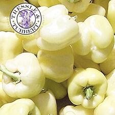 Rare White Sweet Pepper - Diamond  - 15 seeds - UK SELLER