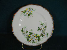 """Royal Albert White Dogwood Brushed Gold 7 1/8"""" Dessert  Plate(s)"""