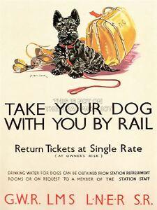Travel Policy Dogs Rail Train Scottish Terrier Sport Bag UK Canvas Print