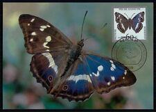 GERMANY MK 1991 SCHMETTERLING BUTTERFLY PAPILLON CARTE MAXIMUM CARD MC CM m470
