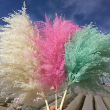 Natural Dried Flower Pampas Grass Reed Branch Bouquet Wedding Party Home Decor