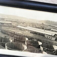 World War 1 WW1 Panoramic LARGE Camp Lewis Fort Photo Photograph Boland 1917