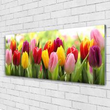 """Glasbild /""""Tulpen/"""" von DEKOGLAS 125x50 aus Acrylglas Wohnzimmer Wand Glas Bild"""