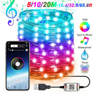 Bluetooth App Control LED Fairy String RGB Light Copper Wire Christmas Outdoor