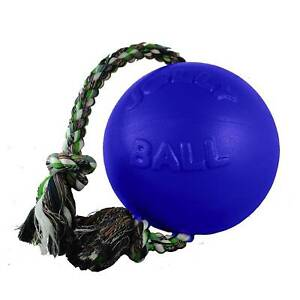 Jolly Pets Romp-n-Roll 8 inch Blue | Rubber Ball with Rope for Dogs