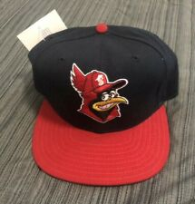 Vintage NEW NWT New Era Snapback Hat Cap MILB Minor League , USA MADE