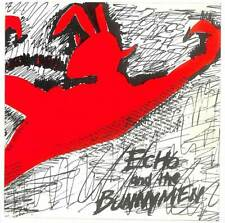 """Echo And The Bunnymen - The Pictures On My Wall - 7"""" Vinyl Record Single"""