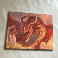 Dungeons and Dragons Dungeon Master's DM Screen Shield D&D 5th ed 2014 dungeons!