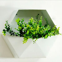 Wall Mounted Iron Hexagon Flower Plant Display Rack Planter Unit White 30cm