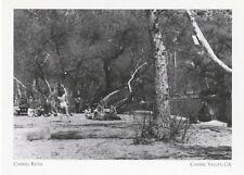 "*Postcard-""The Carmel River"" /1949 Summer Scene/ *Carmel Valley, CA (A46-2)"