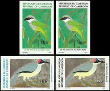 Cameroon Oiseau Grey Necked Rockfowl Mount Kupe Bushshrike Birds Imperfs ** 1991