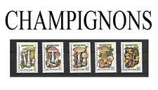 Série de 5 Timbres RUSSES       Thème: LES CHAMPIGNONS