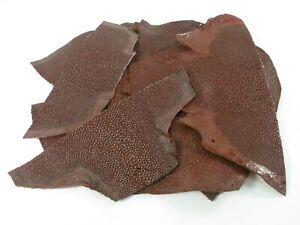 PELGIO Genuine Stingray Shagreen Skin Leather Hide Pelt Scraps 100 gram Red