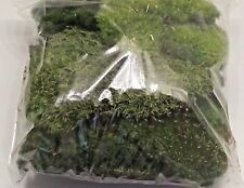 One Gallon Bag LIVE ORGANIC MOSS TERRARIUM VIVARIUM Fairy Garden Frogs