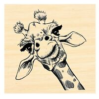 CC135 Giraffe Cover-a-Card Unmounted Cling Rubber Stamp