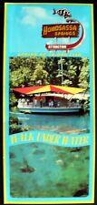 1960s+ 4 x 9 Adv. Placard for Homosassa Springs, Florida