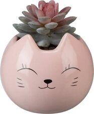 New!~Ceramic Pink Cat Botanical Succulents Planter Decor~Dish/Container/Plan t