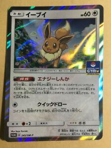 Eevee Pokemon 2018 Holo Gym Promo Japanese 245/SM-P NM-
