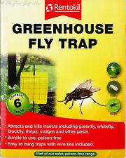 Paquete De 6 trampas de mosca de efecto invernadero Insecto Amarillo Adhesiva Rentokil greenfly Mosca Blanca