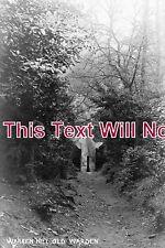 BF 196 - Warren Hill, Old Warden, Bedfordshire - 6x4 Photo