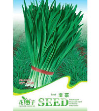 FD1345 1 Pack 100 Seeds Leek Seeds Chives Fragrant-Flowered Garlic 100 Seeds