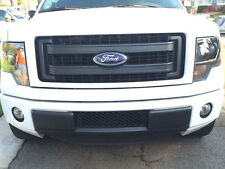 2011-2014 Ford F150 EcoBoost Lower Black Bumper Grille & Intercooler Protector