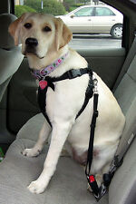 DOG & CAT PET ADJUSTABLE CAR SAFETY SEAT BELT LEASH