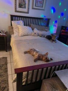 QUEEN BEDROOM SET BLACK W/ GORGEOUS CHERRY TRIM. Under bed 4 drawer storage +