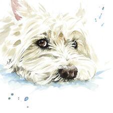 Westie Blank Greeting Card West Highland White Terrier Dog Any Occasion Birthday