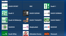 IPTV 12 Month Arabic channels and more!