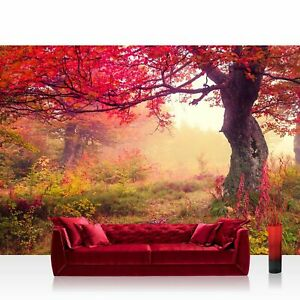 Vlies Fototapete PREMIUM PLUS Wand Foto no. 258 Wald Bäume Herbst Natur Sonne