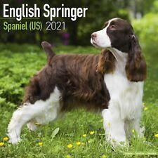 English Springer Spaniel (Us) Calendar 2021 Premium Dog Breed Calendars