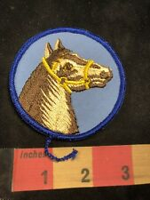 Gorgeous BROWN HORSE Patch - Equestrian  89I