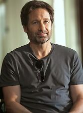 PHOTO CALIFORNICATION - DAVID DUCHOVNY - 11X15 CM # 1