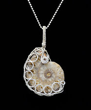 "Fossilized Ammonite Fancy Sterling Silver Wire Wrapped Pendant W/20"" Ball Chain"