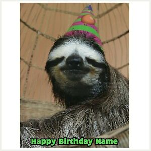 Sloth Party Hat Edible Image personalised icing cake topper decoration rectangle