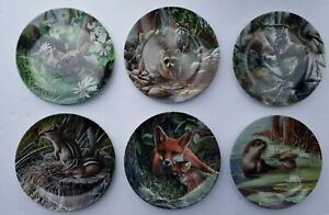 """Collector Plate Kevin Daniel """"Forest Collection"""" – The Raccoon"""