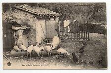 AGRICULTURE CAMPAGNE scenes champetres les petits cochons de la basse cour