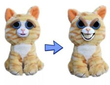 Fiesty pet Grin cat Orange