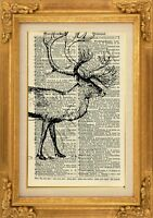 ORIGINAL - Highland Stag Print on Vintage Dictionary Page - Art Print - NO.456B