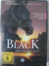 Black der schwarze Blitz - Pferde, Rennsport, Jockey, Hengst, Farm, Reitstall