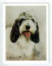 New Petite Basset Griffon Vendeen Head Study 6 Note Cards By Ruth Maystead